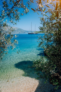 Olive leaf frame with mediterranen bay and Luxury yacht . Summer beach vacation relaxation retreat getaway concept