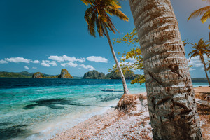 Palawan well known must see places. Palm trees and lonely island hopping tour boat on empty Ipil beach of tropical Pinagbuyutan, Philippines