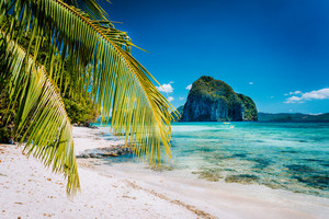 Palm tree branches on sandy beach with impressive Pinagbuyutan island in background. Dreamlike landscape scenery in El Nido, Palawan, Philippines