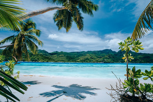 Panorama of tropical beach lush vegetation blue lagoon on bright sunny day. Vacation holidays concept. Exotic place paradise getaway, dream vacation