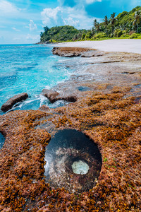 Paradise beach with granite rocks, palm trees, white sand and blue clear water on a rough coast of Anse Bazarca, Seychelles