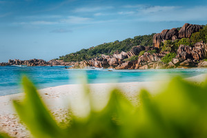 Picturesque Grand Anse tropical beach in La Digue, Seychelles with its famous granite rock formations. Defocused blur natural green