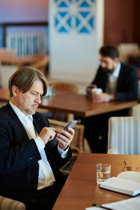 Profile view of handsome middle-aged white collar worker using modern smartphone while sitting in cafe and waiting for his business partner, waist-up portrait
