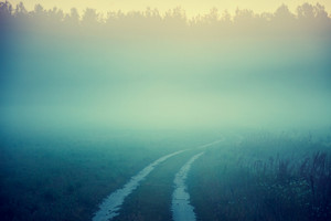 Road to nowhere. Country road in a misty morning. Foggy autumn rural landscape at sunrise