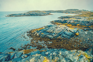 Rocky beach. Atlantic shore in the misty morning. Sea coast. Beautiful wilderness Norway