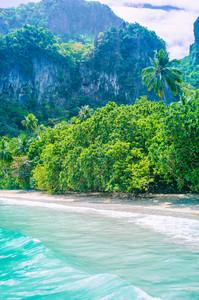 Rocky coastline and vegetation of Cadlao Island, El Nido, Palawan, Philippines