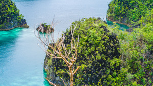 Rocky Islands in Peanemo, Raja Ampat, West Papua, Indonesia
