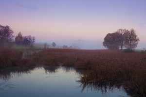 Rural morning, pink mist over lake