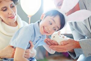 Smiling boy cuddling small bunny - his birthday gift