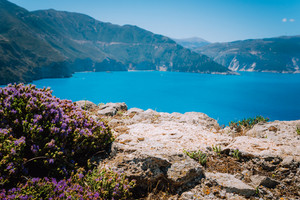 Spring blossom flowers in Greece. Blurred background with beautiful sea bay and cliffs