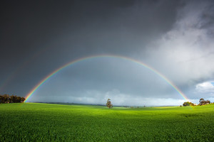 Stunning rainbow over a field in the Clare Valley