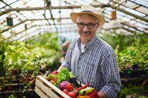 Successful farmer looking at camera in green-house