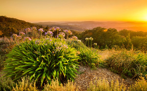 Sunrise in the Adelaide Hills