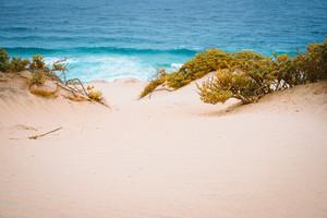 Surreal golden sand dunes on the Atlantic coastline on Baia Das Gatas. North of Calhau, Sao Vicente Island Cape Verde