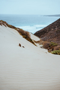 Surreal white sand dunes on the Atlantic coastline on Baia Das Gatas. North of Calhau, Sao Vicente Island Cape Verde