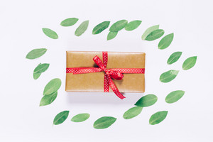 Top view of gift box in wrapping paper on white background with green leaves
