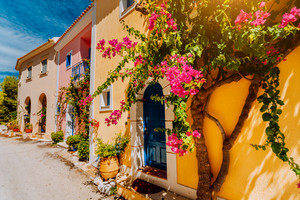 Traditional colorful greek houses in Assos village. Blooming fuchsia plant flowers growing around door. Warm sunlight. Kefalonia island, Greece