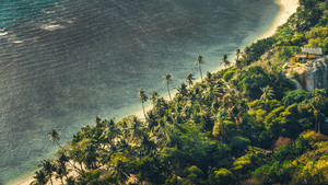 Tropical sandy beach with palms and an house, gray ocean during a windy day, Haad Rin Beach, Koh Phangan, Thailand