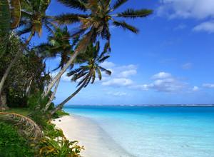 Tropical Scenic