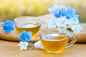 Two cups of herbal tee on grunge wooden table, decorated with harebell flowers in the garden