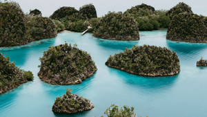 View from the top viewpoint of Pianemo island overgrown with jungle plants, surrounded by shallow blue ocean lagoon. Raja Ampat, West Papua, Indonesia