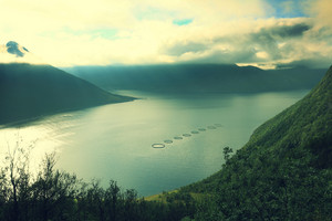 View of a fjord with salmon farms, Norway