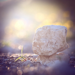 Vintage stone at sunrise. Nature