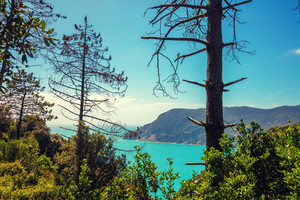 Wilde rocky sea coast. Ligurian sea, Monterossa Village, Cinqe Terre, Italy