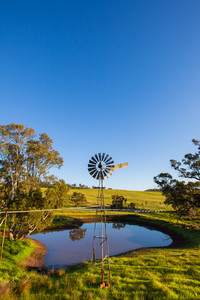 Windmill in rural South Australia