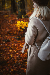 Women holding bouquet of yellow autumn maple leaves in her gloved hands. Ground covered with golden leaves lightend by warm evening light