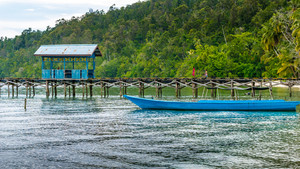 Wooden Pier of an local Village on Gam Island, West Papuan, Raja Ampat, Indonesia