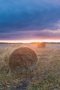 Straw bales on field after harvest at sunset