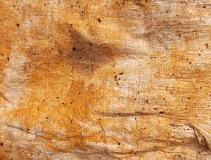 Subtle Surface Texture 44