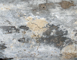Subtle Surface Texture 46