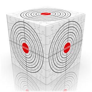 Success Target Cube