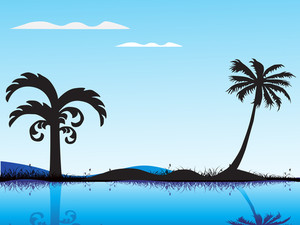 Summer Background With Palm Tree