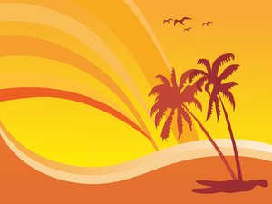 Summer Design With Palm Tree And Rainbow Background