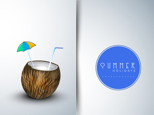 Summer Season  Banner With Coconut Water And Summer Holiday Tag