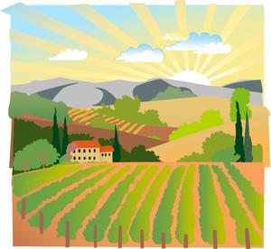 Summer Solar Rural Landscape With A Sunset