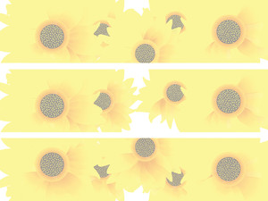 Sunflowers Header