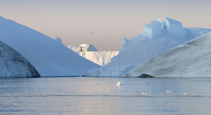 Sunlit icebergs in calm waters