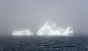 Sunlit icebergs in dense fog