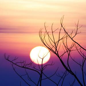 Sunrise landscape scene detail and background