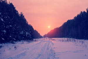 Sunrise over snowy road in the forest