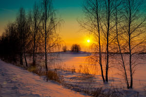 Sunset over snowy field with trees