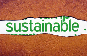 Sustainable Text On Torn Paper