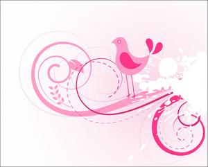 Swirls Splash And Bird Vector Background