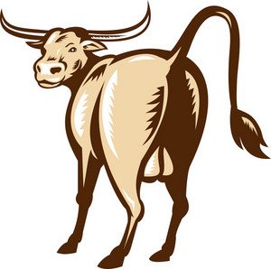 Texas Longhorn Bull Rear View Retro