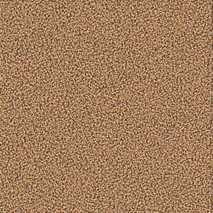 Textured Sand Vector Background
