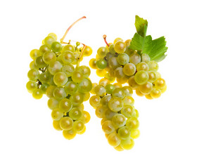 The Grapes Isolated On White